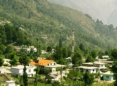 A Village in Champawat