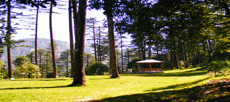 Guide to Arrive at Dhanaulti